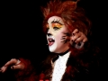 CATS 028 - 27