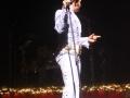 Elvis - 26