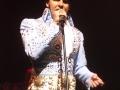 Elvis - 27
