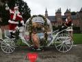 The Christmas show - 11