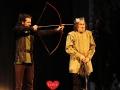015 Robin Hood