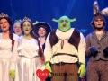 Shrek - 29