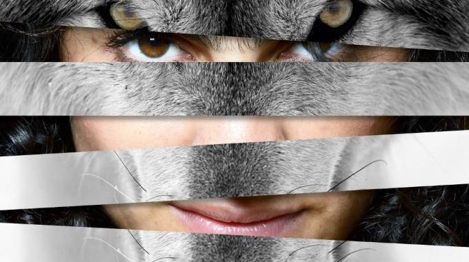 Loslopend wild 8+: prikkelt de fantasie van kinderen en volwassenen
