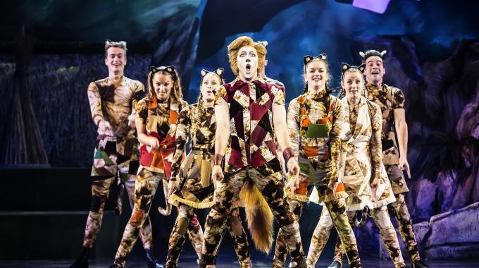 Kattenstreken verplaatsen zich naar Nederlandse en Vlaamse theaters