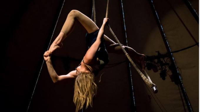 Koninklijk Theater Carré presenteert Carré Beweegt Vier internationale shows met energie, skills en slapstick