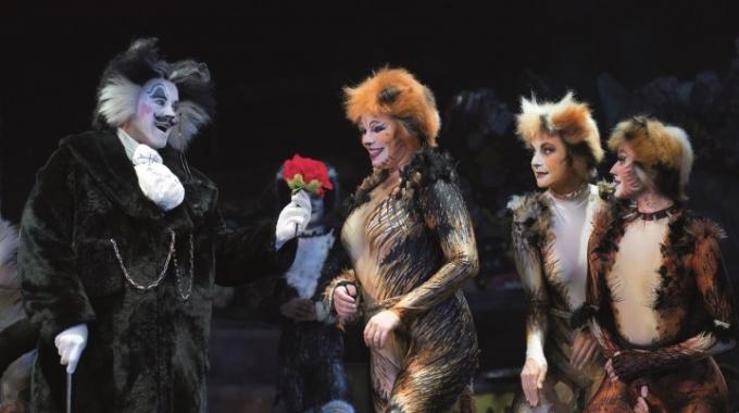 Win 2 kaarten voor De musical Cats