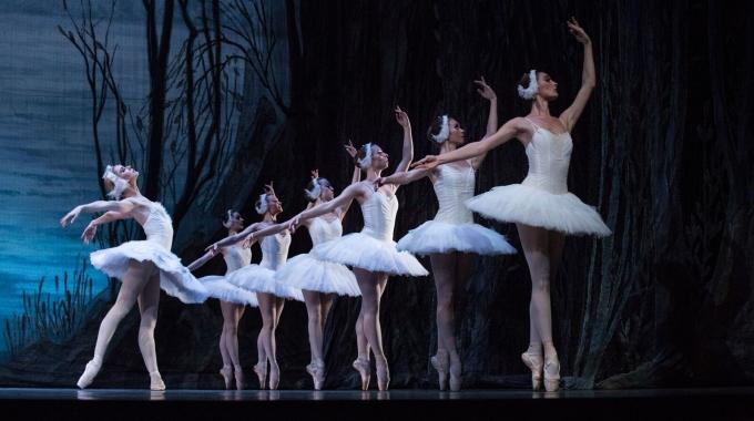 Charkov City Opera & Ballet komt terug naar Vlaanderen met  'Het Zwanenmeer', 'De Parelvissers', 'De Notenkraker' en 'Aïda'.