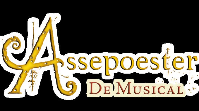 Auditie Stiefzus Assepoester De Musical