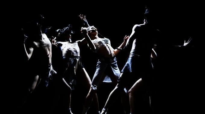 Beleef de liefde met De Dutch Don't Dance Division